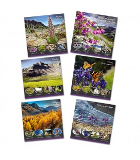 collection de 6 cartes postales FLORE patrimoine du mercantour