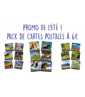 Pack 18 cartes postales carrées (3 collections)